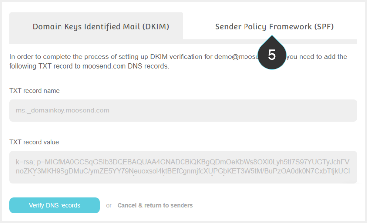 SPF Records Step 5 : Clik on the Sender Policy Framework tab