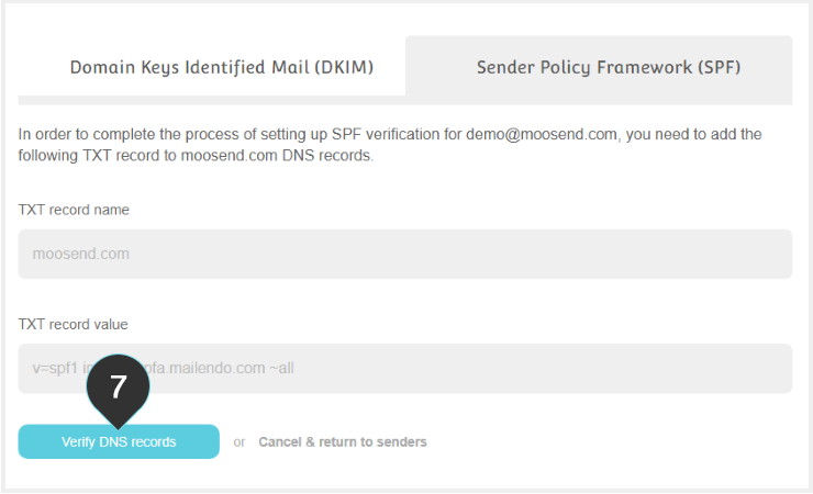 SPF Records Step 7 : Click the verify DNS records button