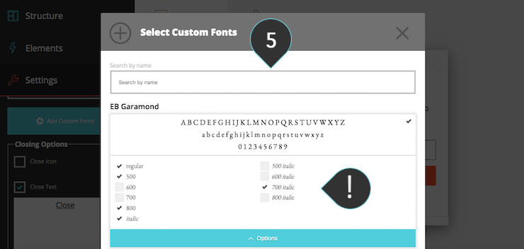 Subscription_Forms_Custom_fonts_5.png