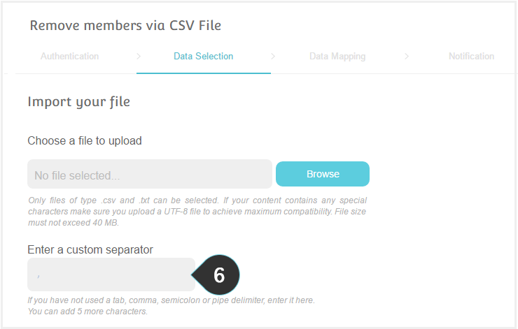 Remove members using CSV Step 6 : Enter a custom separator